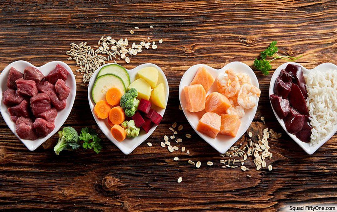 Basics of Healthy Human Food