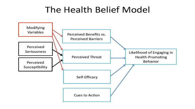 What Is the Health Belief Model (HBM) and How Can It Help Me Detect Disease?
